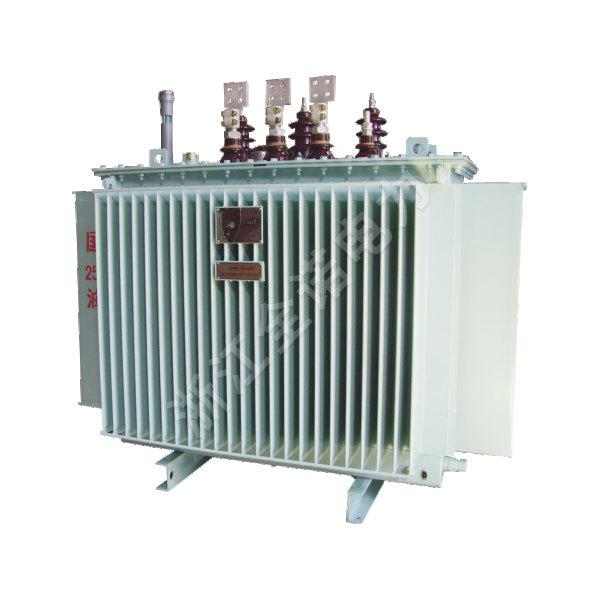 10kV级油浸式变压器