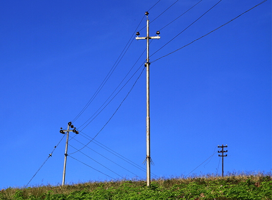 中國電氣工業創新產品、中國電氣工業領軍企業以及中國電氣工業優秀解決方案三大獎項隆重揭曉