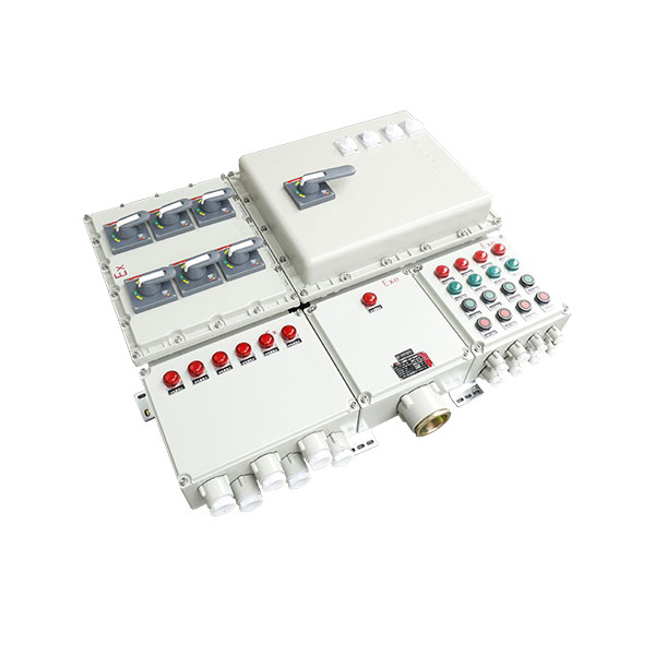 BXX51-DIP粉塵防爆動力檢修箱