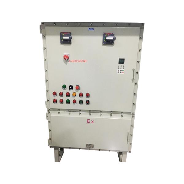 BXX51_2防爆动力检修箱(ⅡB、ⅡC、户内、户外)