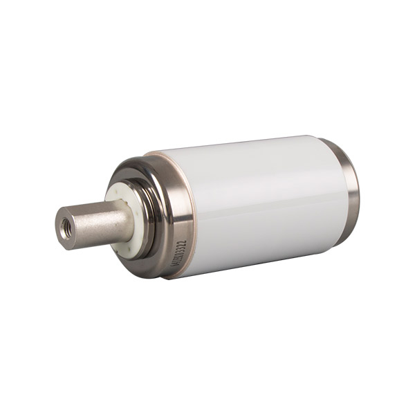 Vacuum interrupter for solid sealing pole